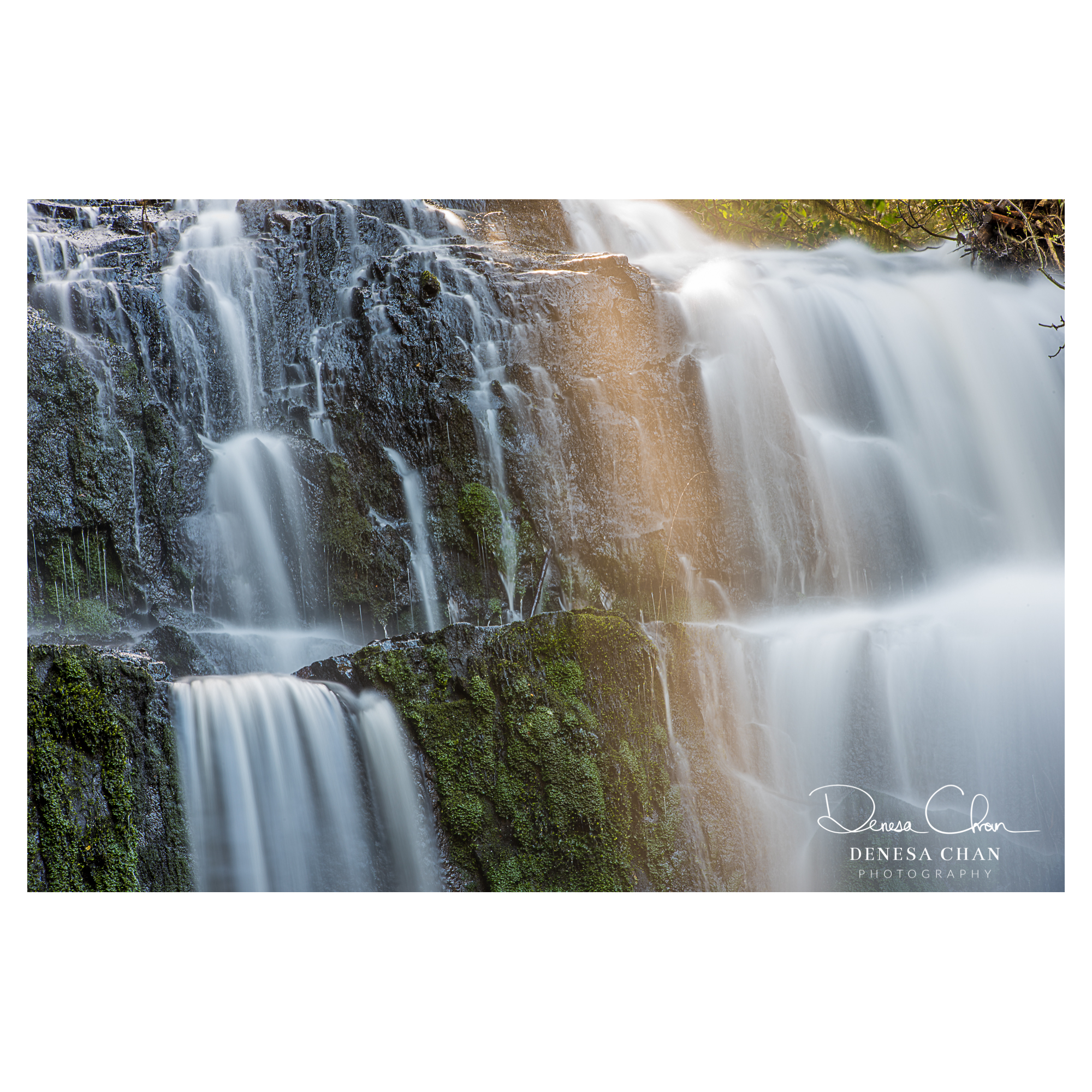 Parakaunui_Falls_Catlins_South_Island_New_Zealand_©_Denesa_Chan_Photography_2815
