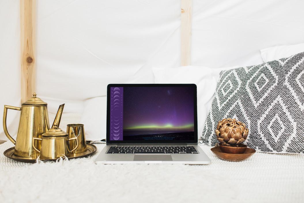 Calendar_Laptop_Bronze_©_Denesa_Chan_03-