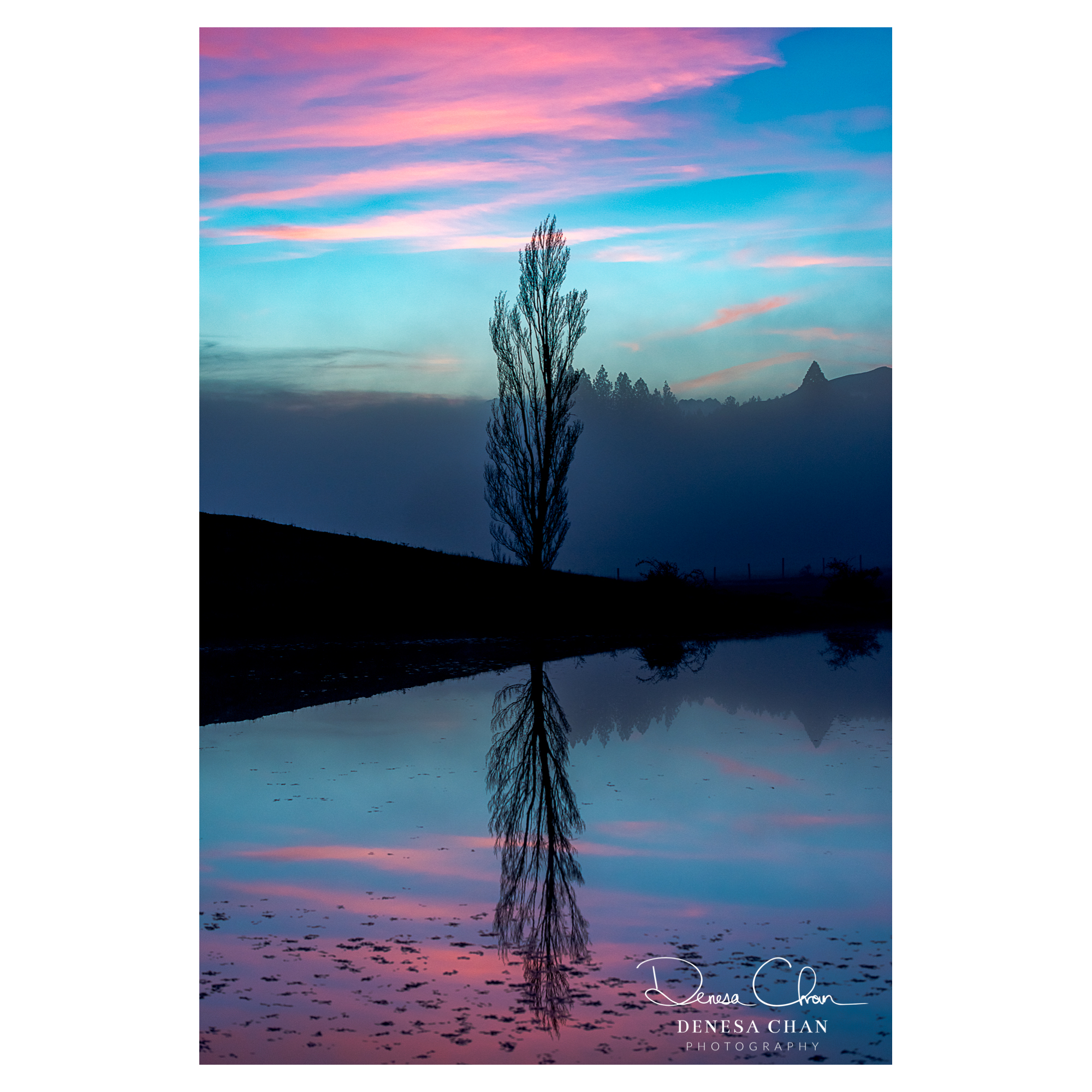 Mackenzie_Country_Sunset_Amazing_Tree_Reflection_New_Zealand_©_Denesa_Chan_Photography_3992