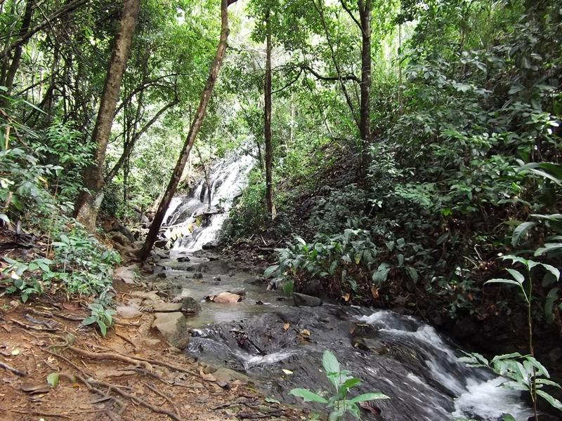 Cachoeira da Ribeira