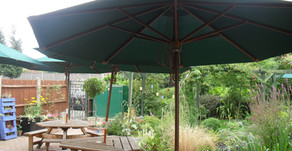 Rural Tea Rooms: Covid-19 update