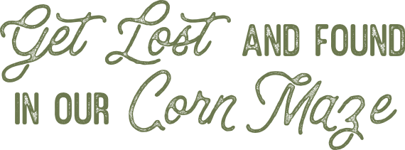 get-lost-corn-maze.png