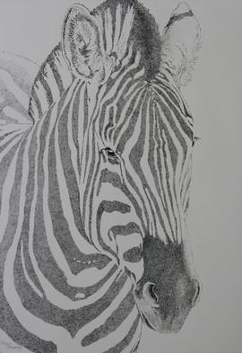 Serengeti Patterns