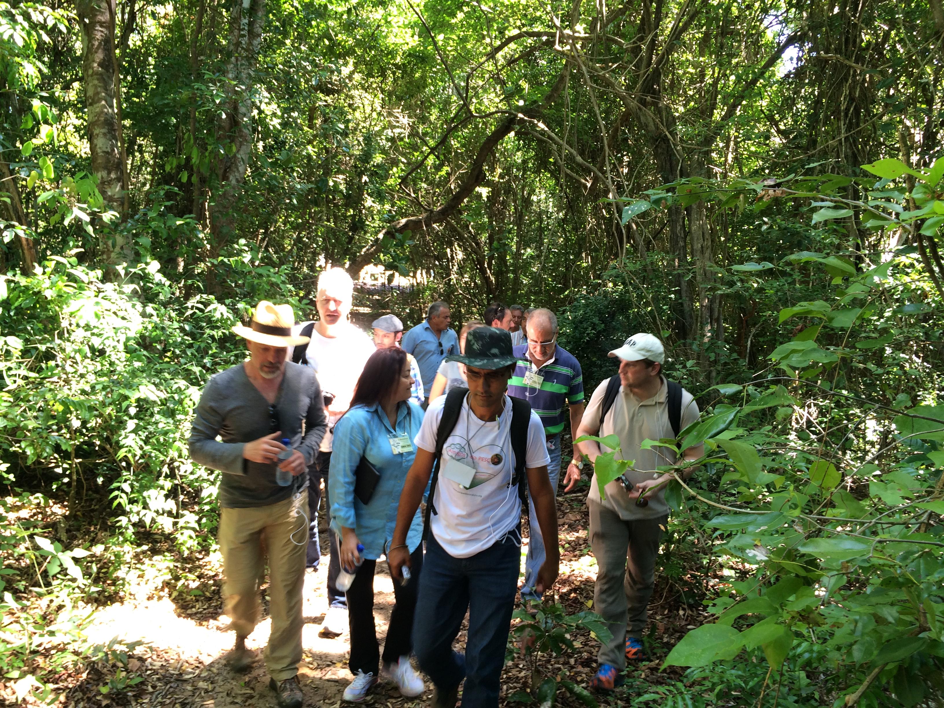 Participantes em visita de campo