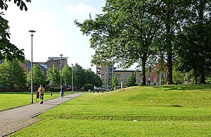 People walking through green space