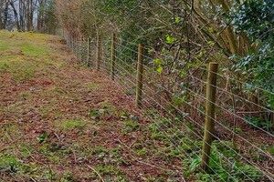 Some of the new fencing at Titley Pool  Image credit: Herefordshire Wildlife Trust