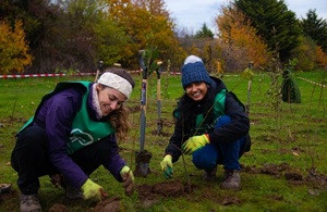Some of the planted trees - an unexpected bonus of EMC's recycling mistake. Pic: Beth McConnell, Trees for Cities