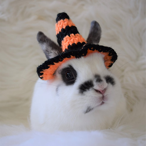 Orange and Black Witch Hat