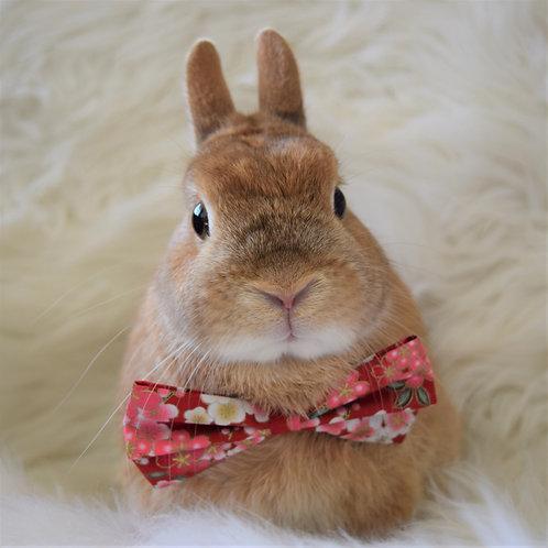 Red Sakura Bow Tie