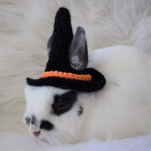 Classic Black Witch Hat