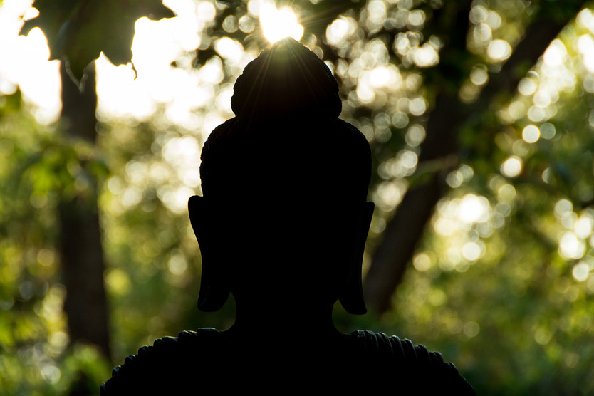 Dharma Mountain and Forest Meditation
