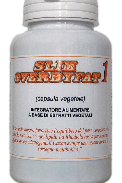 SLIM OVERBYFAT 1
