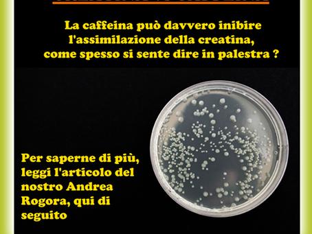 CAFFEINA vs CREATINA