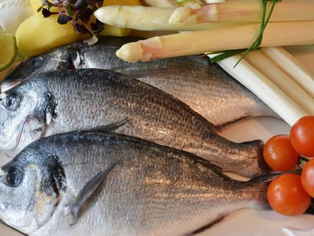 Mangiare pesce fa bene alla nostra salute…  Tante certezze e qualche dubbio