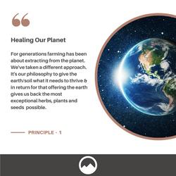 Sacred Plant Co Soil Care