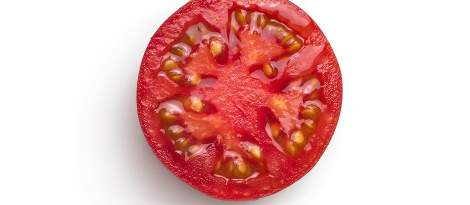 How To Grow Brandywine Tomato From Seeds