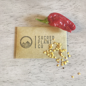 Sacred Plant Co Peppermint Seeds