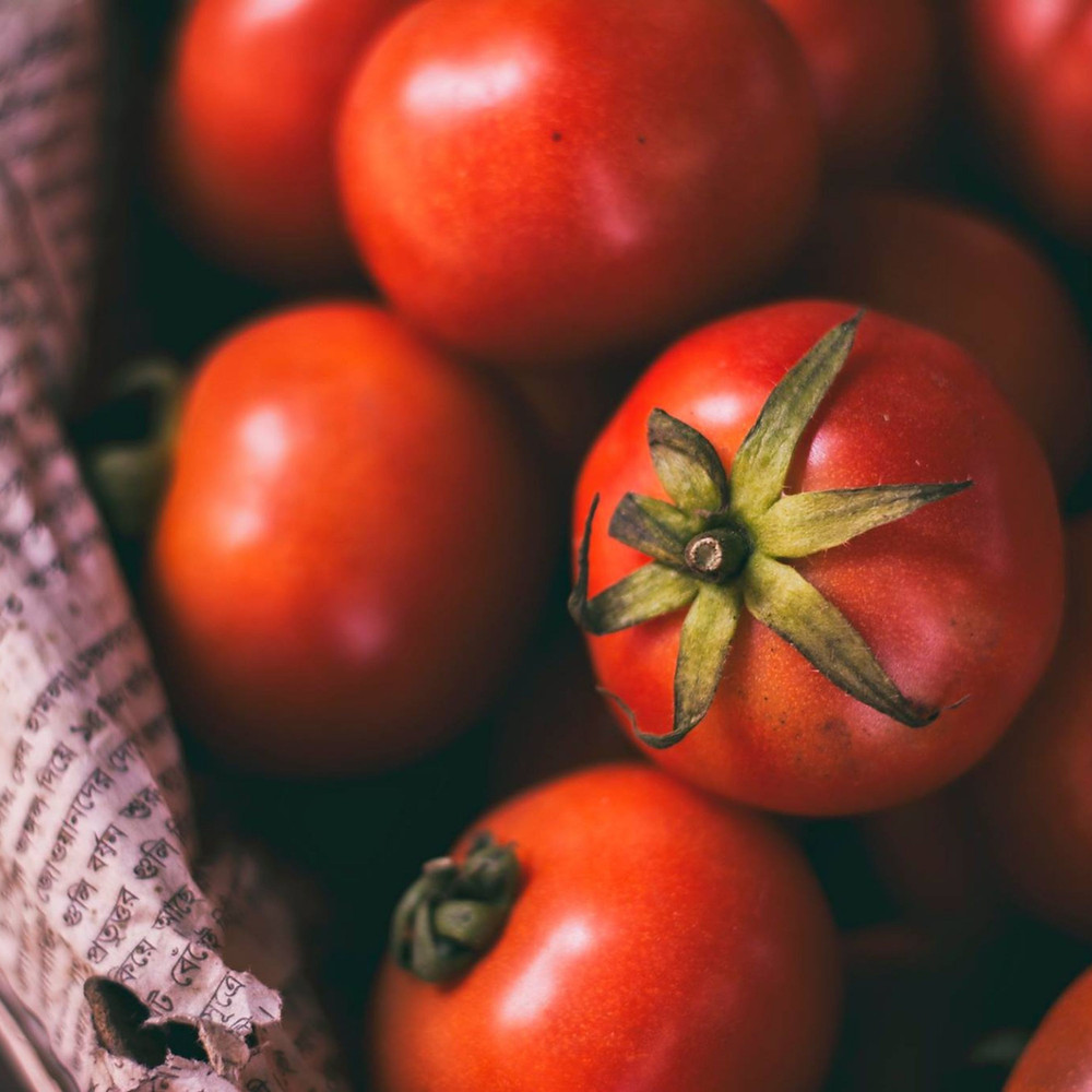 Sacred Plant Co Tasmanian Chocolate Tomatoes