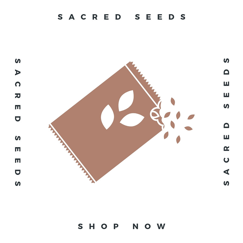 Sacred Plant Co Comfrey Seeds