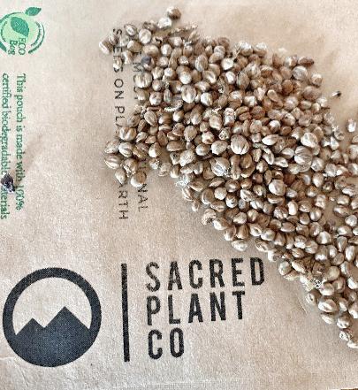 Sacred Plant Co White Fringetree