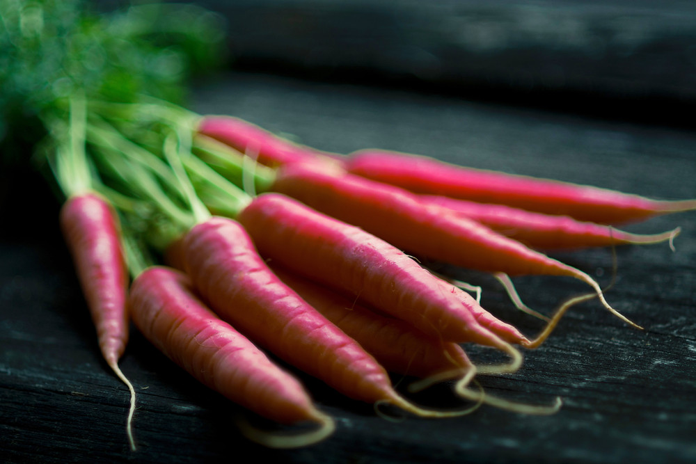 Sacred Plant Co Atomic Red Carrots