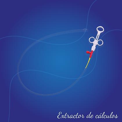 Extractor de cálculos