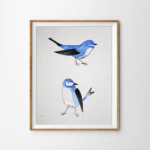 Vögel Print
