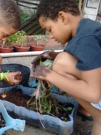 Plantio Horta Comunitária - Projeto Viva Bairro / Comunidade Cabritos Tabajaras / RJ
