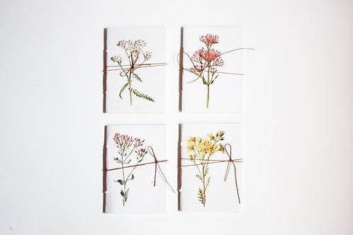 Kit Cadernos Botânicos / A6 / Miolo pólen
