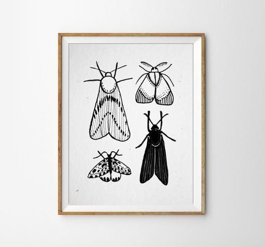 Motten poster.jpg
