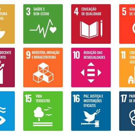 Como a Schöpf se alinha aos Objetivos de Desenvolvimento Sustentável (ODS) da ONU.