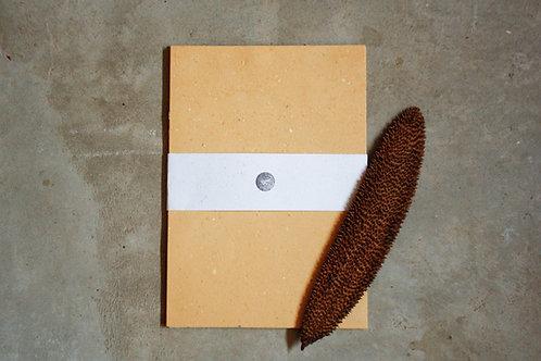 Pardo reciclado / A4 / com sementes / 20 folhas