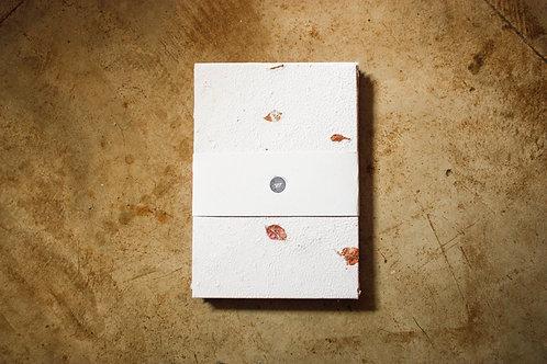 Papel Flores Secas / A4 / 10 folhas