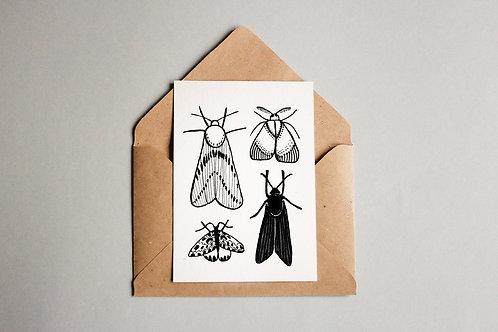 Cartão Motten