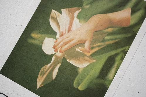 Print Touch  /  por Anna Janot
