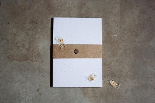 Off white / A4 / com sementes / 20 folhas