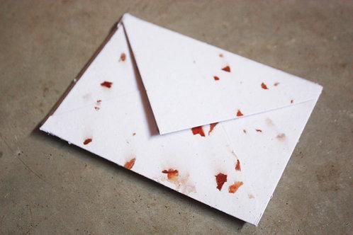 Envelope Offwhite + Casca de cebola