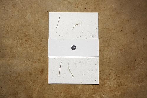 Papel Capim Limão / A4 / 10 folhas