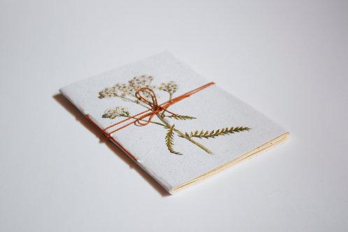 Caderno Botânico / A6 / Miolo pólen