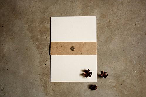 Pólen reciclado / A4 / com sementes / 20 folhas