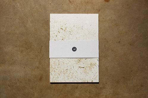 Papel Camomila / A4 / 10 folhas