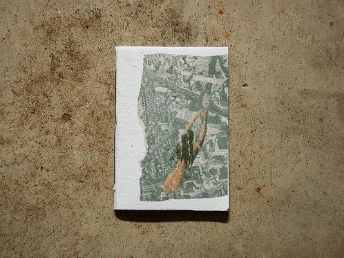 Caderno Feromônia_7  por Ana Brito