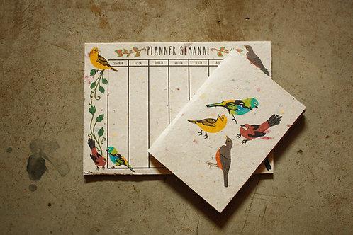 Kit Planner + Caderno / Passarinhos Brasileiros / por Flora Schneider