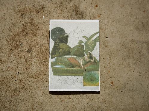 Caderno Feromônia_3  por Ana Brito