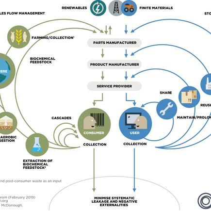Design Circular e a Economia Circular
