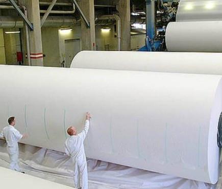 A indústria de papel e celulose e seus impactos ambientais