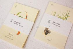 Monica Claro_prints botanicos
