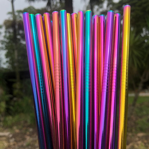 Stainless steel straw packs