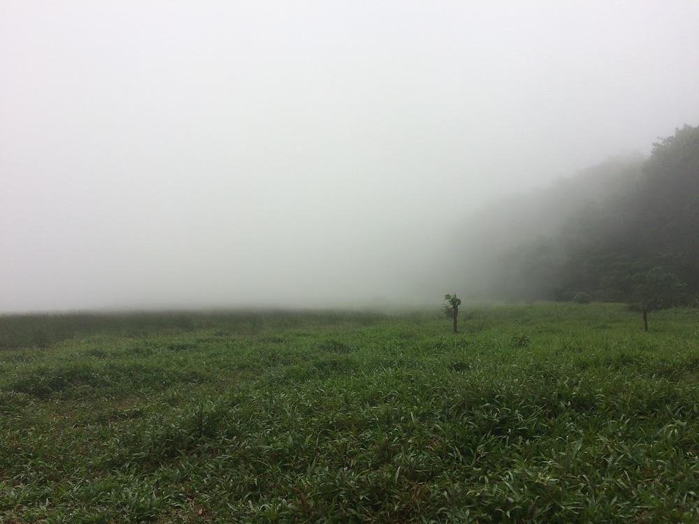 campement dans la brume