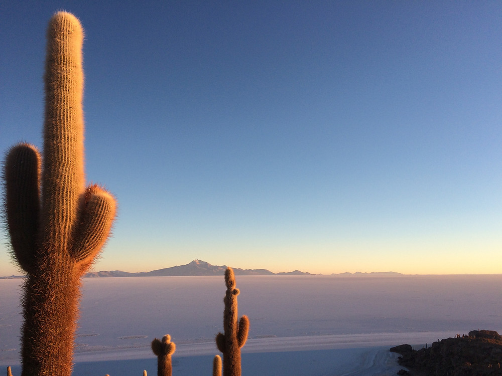 Lever de soleil depuis l'île aux cactus dans le Salar de Uyuni